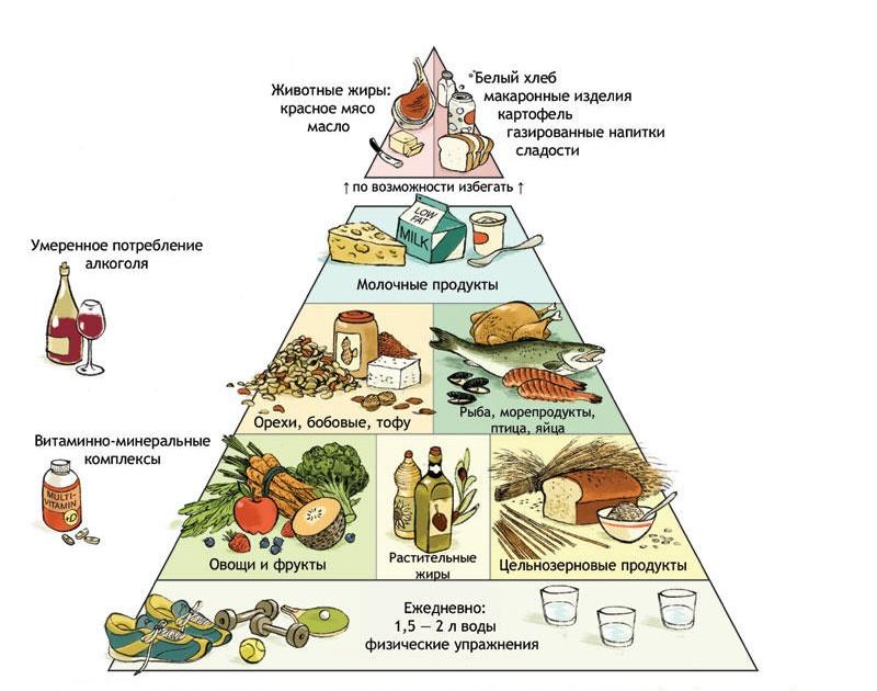 фаст фуд здорового питания франшиза